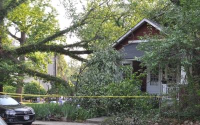 Fallen Limb on House, Hyattsville MD