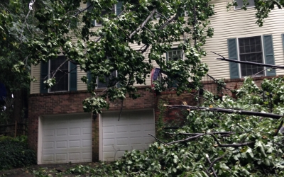 Fallen Tree Crushes Roof